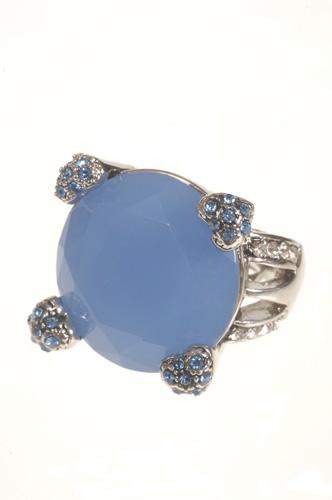ringblauwe-steen-zomer